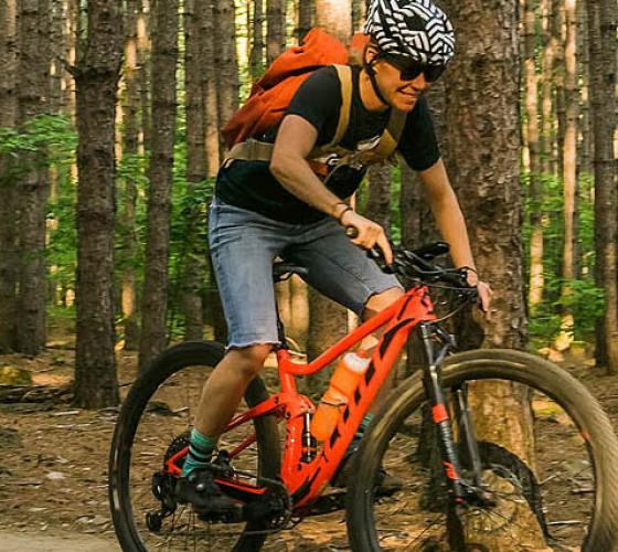 Mountain biker going through a wooded trail