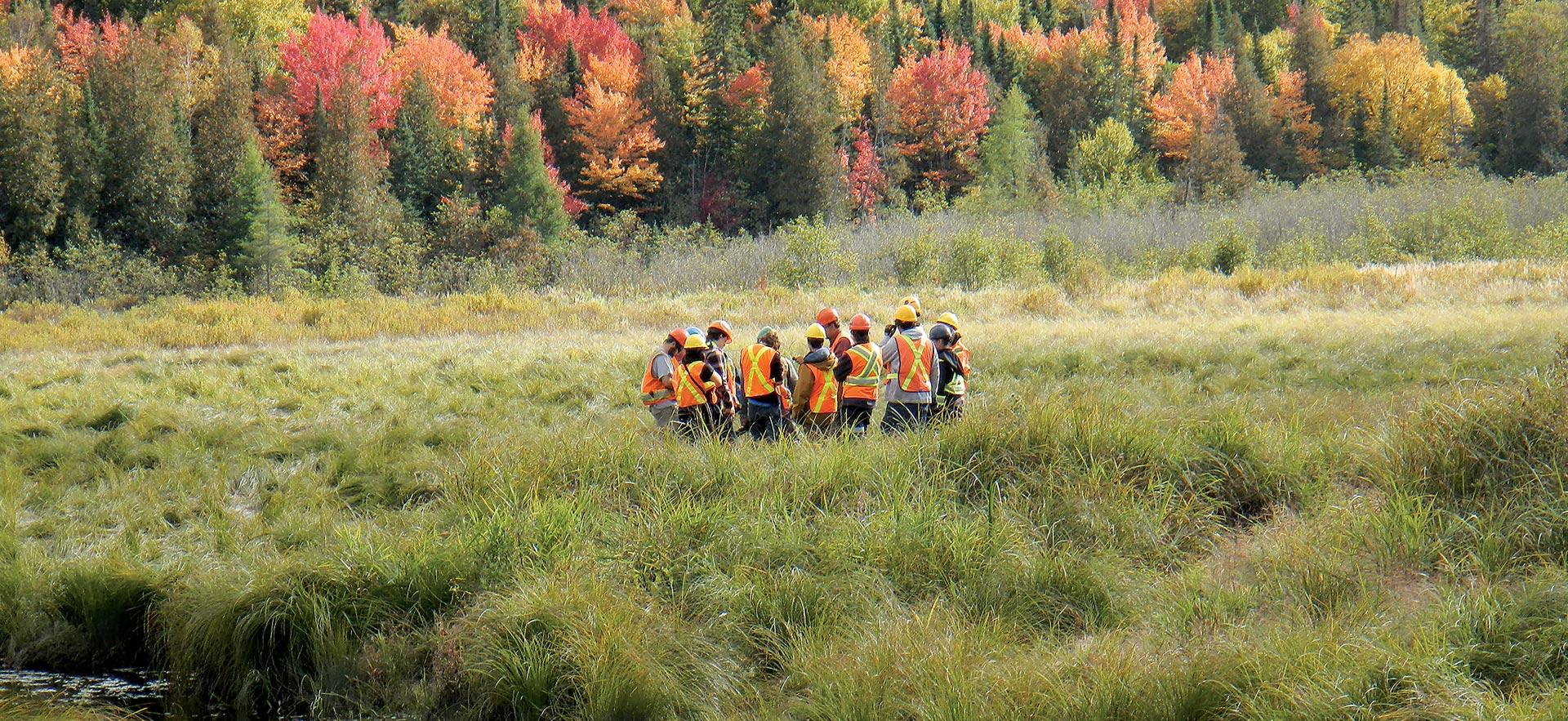 A class in Natural Environment Technician - Conservation and Management gather in a field in nature to conduct a class.