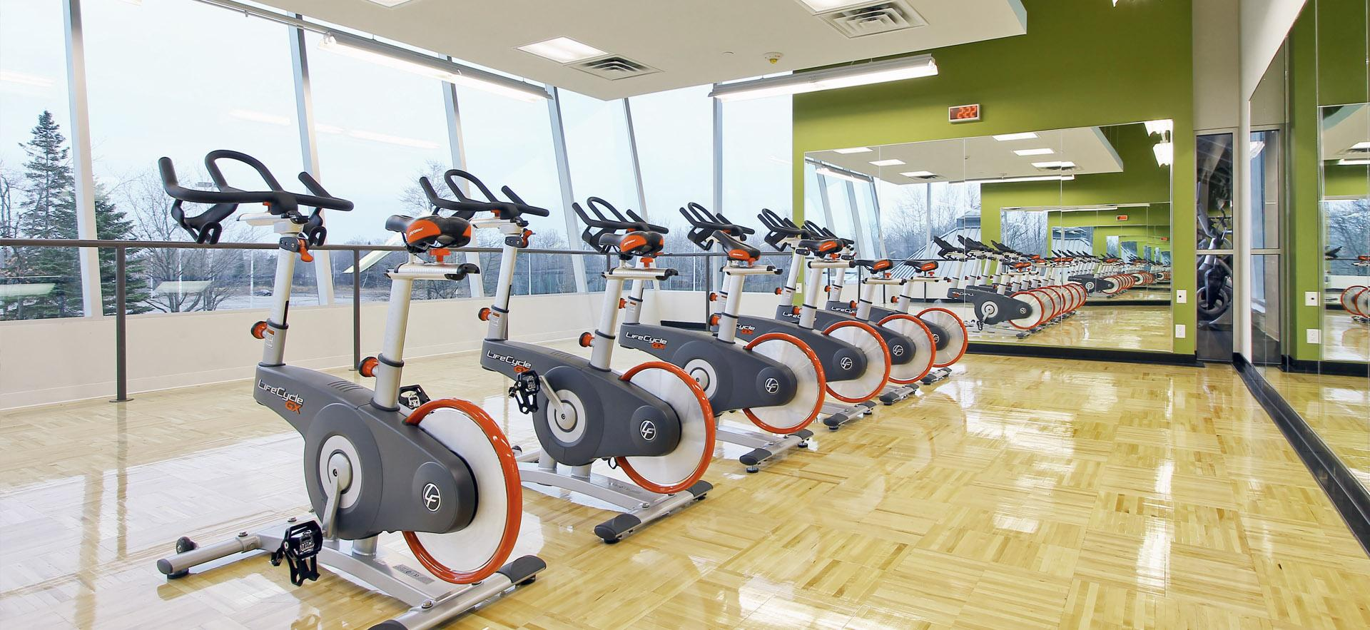 Row of bikes in fitness room